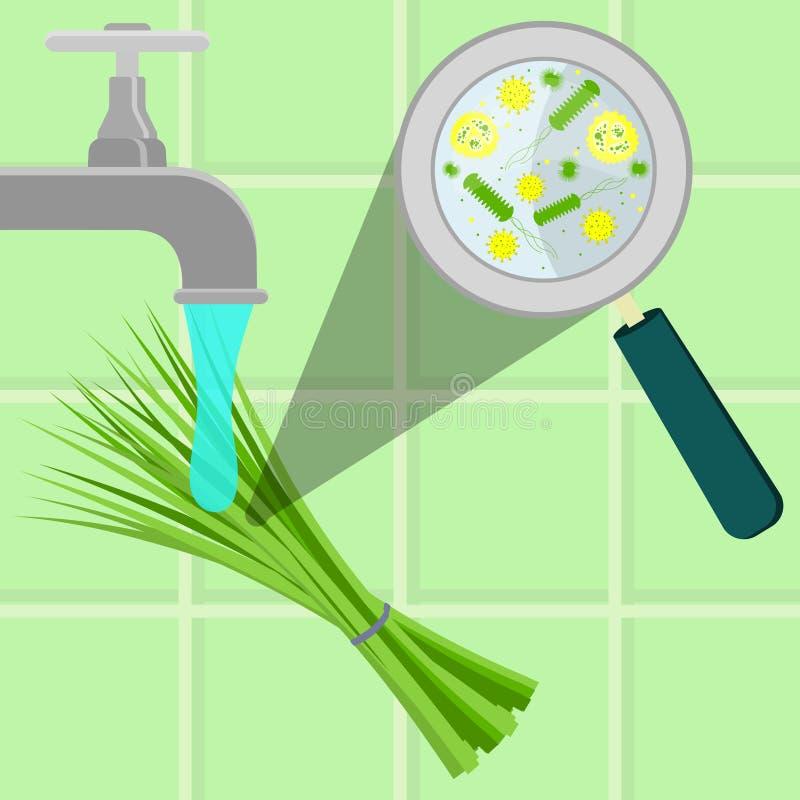 Lavare erba cipollina contaminata illustrazione vettoriale