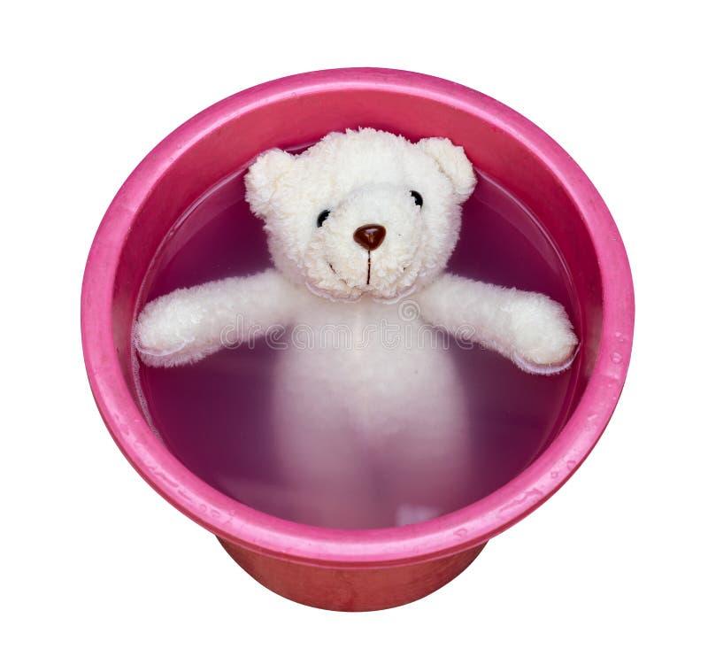Lavare orsacchiotto in secchio di acqua, isolato su fondo bianco, percorso di ritaglio immagini stock
