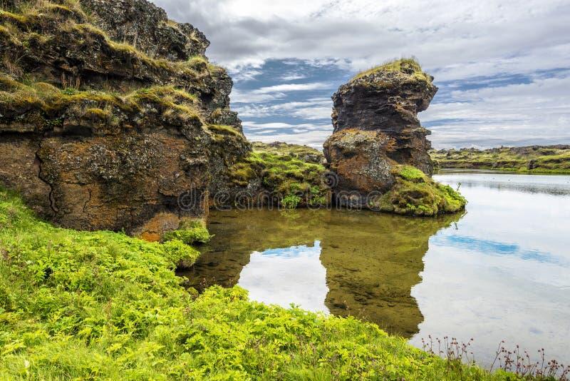 Lavasäulen von Hofdi-Vorgebirge im Mytavn Seebereich in Nord-Island stockfotos