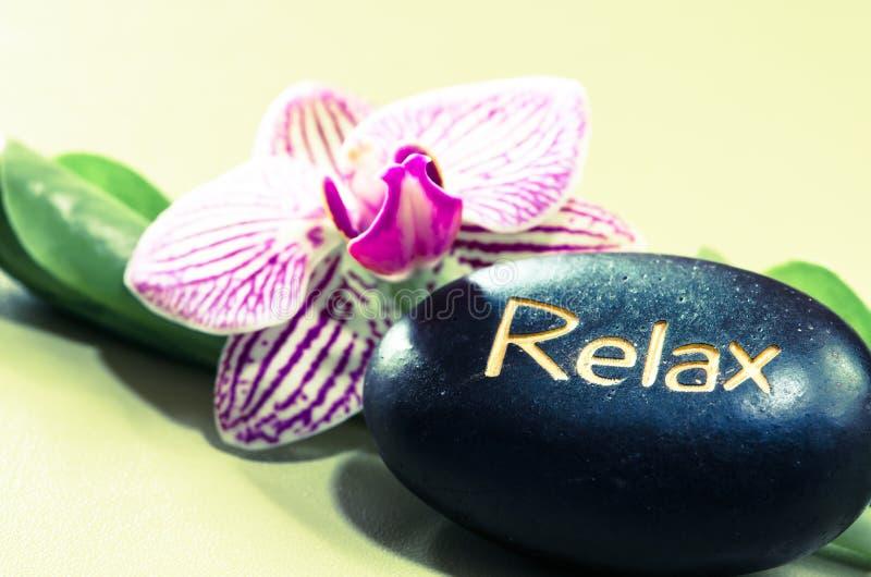 Lavasteen en orchidee royalty-vrije stock foto