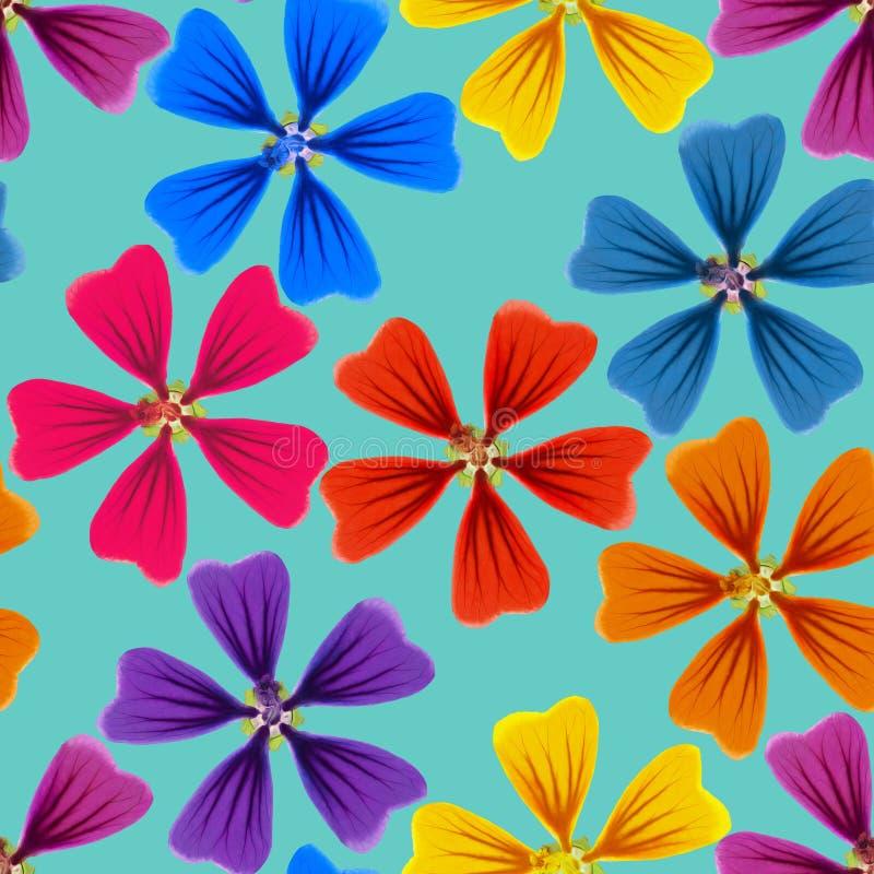 Lavatera, malva, malva Textura inconsútil del modelo de flores La Florida stock de ilustración