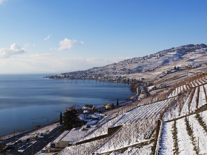 Lavaux nell'inverno con neve fotografia stock