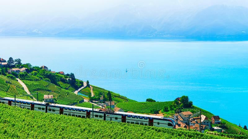 Lavaux, Suíça - 30 de agosto de 2016: Trem em terraços do vinhedo em Lavaux no lago Genebra e em cumes suíços, distrito de Lavaux fotografia de stock royalty free