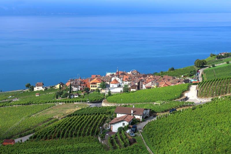 Lavaux, Switzerland royalty free stock photography