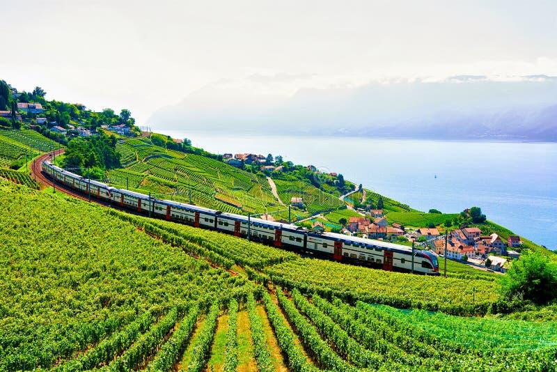 Lavaux Szwajcaria, Sierpień, - 30, 2016: Działający pociąg przy Lavaux winnicy tarasami wycieczkuje ślad blisko Jeziornych Lemańs obrazy stock