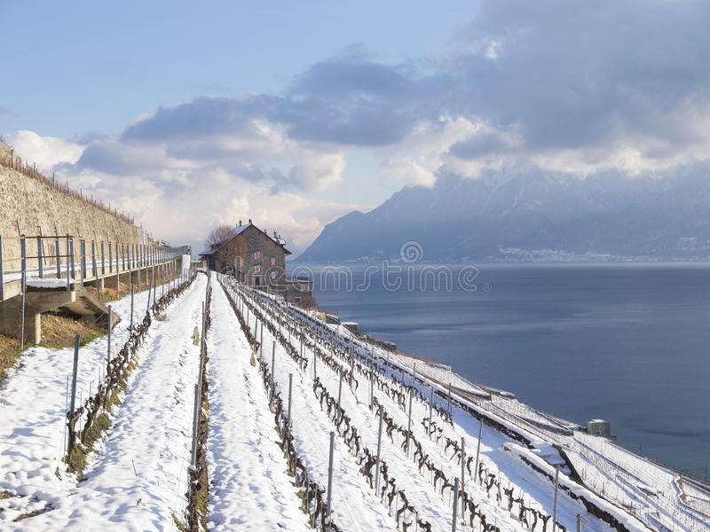 Dezaley In Lavaux During Winter with Snow. View in Lavaux at Dezaley towards Montreux in Winter royalty free stock images