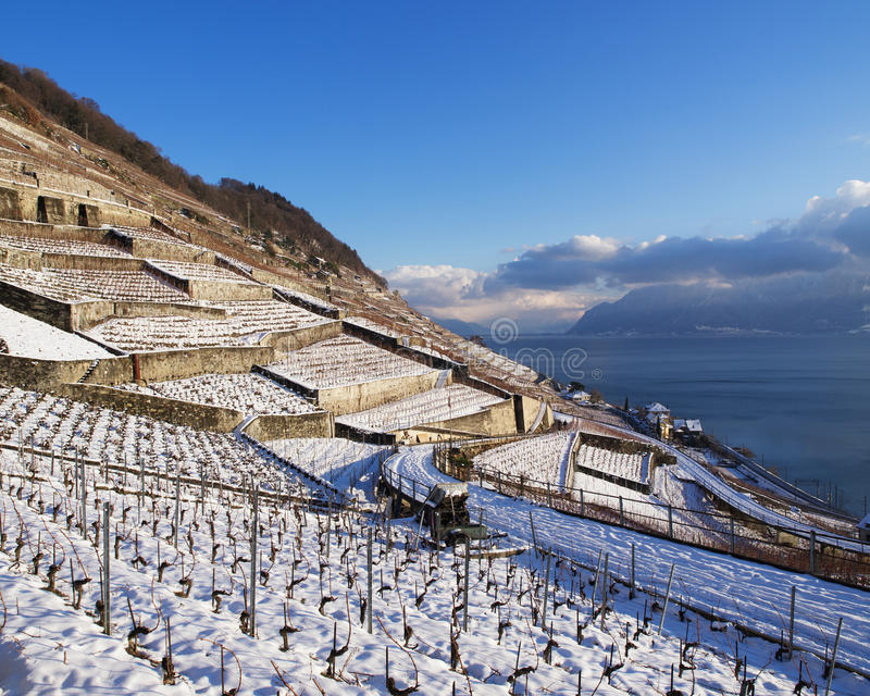 Epesses In Lavaux During Winter With Snow. View in Lavaux at Dezaley towards Cully stock image