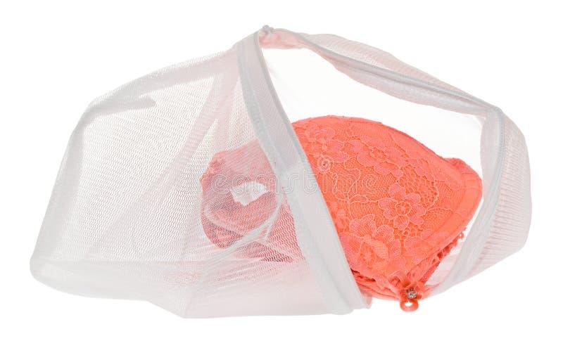 Lave el bolso para la ropa delicada, zapatos, ropa interior, sujetador Un lavadero foto de archivo libre de regalías