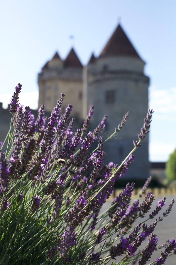Lavendar e iglesias viejas, al sur de Francia fotografía de archivo