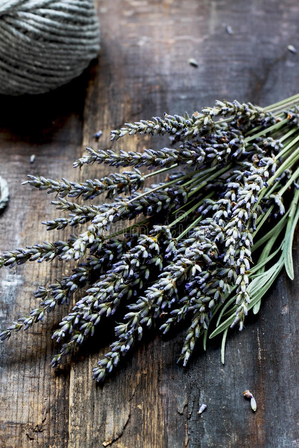 Lavendel - aromatische bloemen stock afbeelding