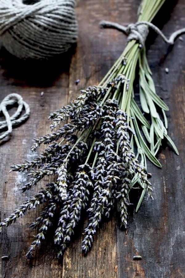 Lavendel - aromatische bloemen stock afbeeldingen