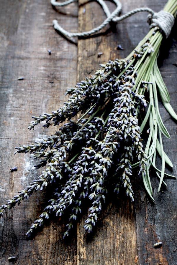 Lavendel - aromatische bloemen stock foto