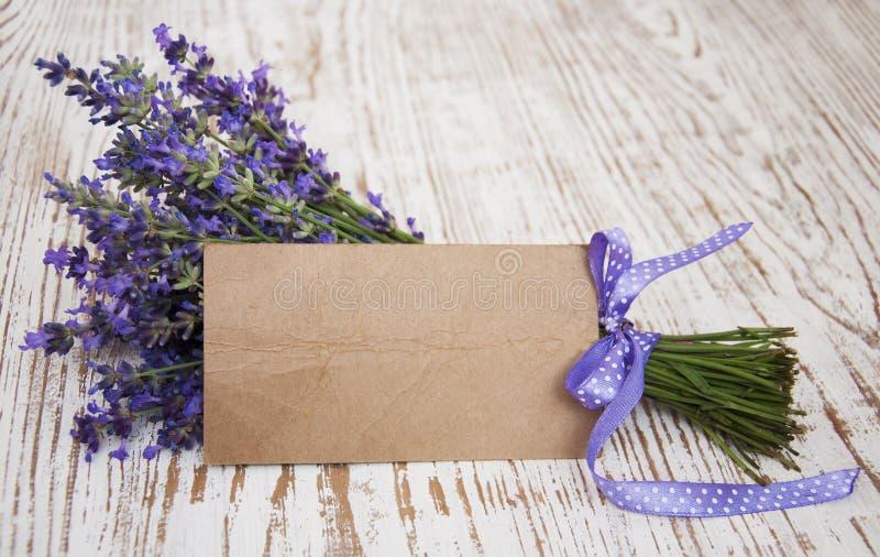 Lavendel auf Weinleseholz mit freiem Raum lizenzfreie stockfotos