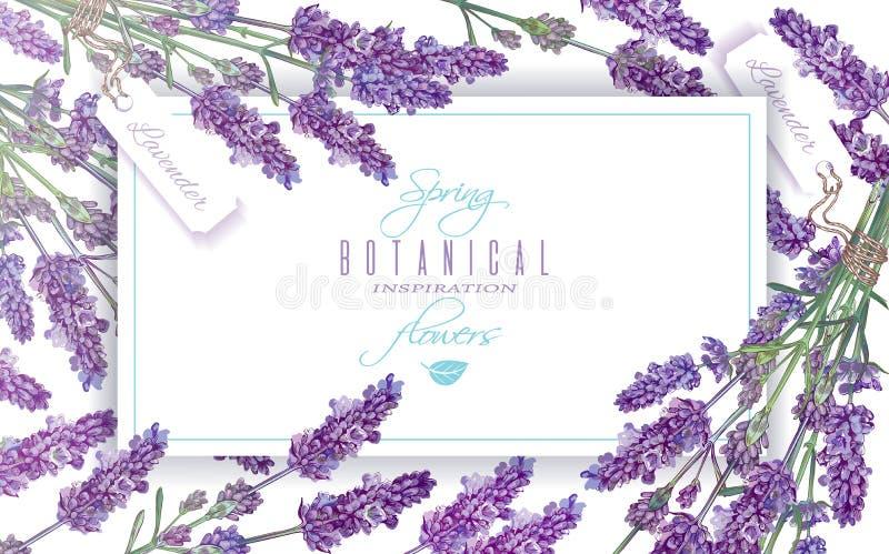 Lavendel blüht Fahne vektor abbildung