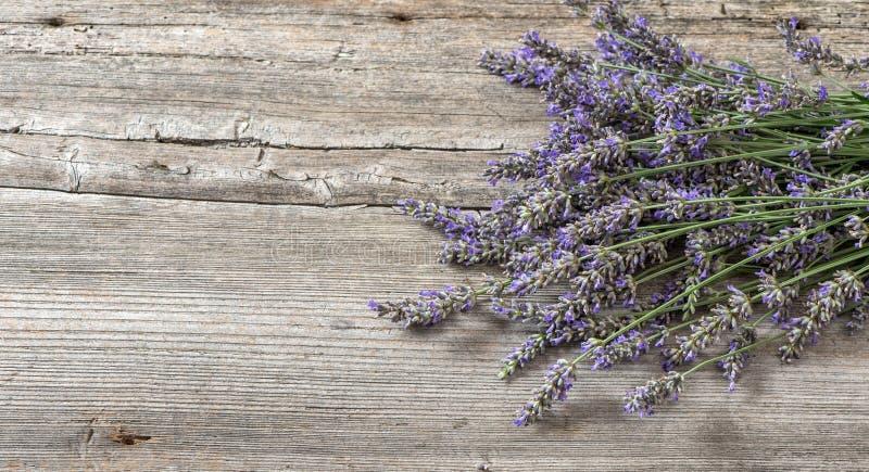Lavendel blommar på träbakgrund för livstid tappning fortfarande royaltyfri bild