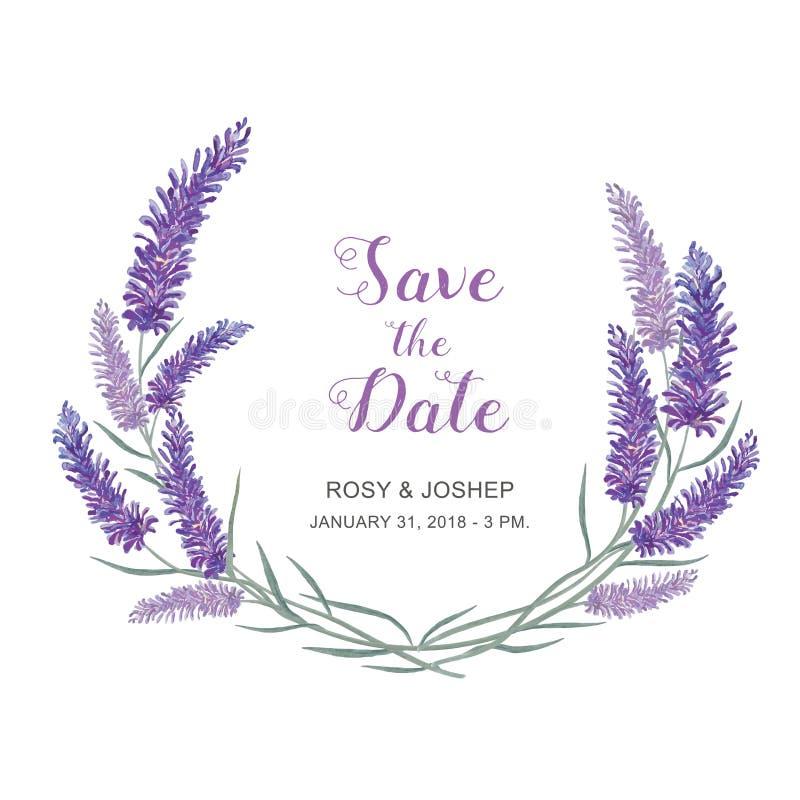 Lavendel blommar vattenfärgbeståndsdelar Samling av blom- och sidor på en vit bakgrund stock illustrationer
