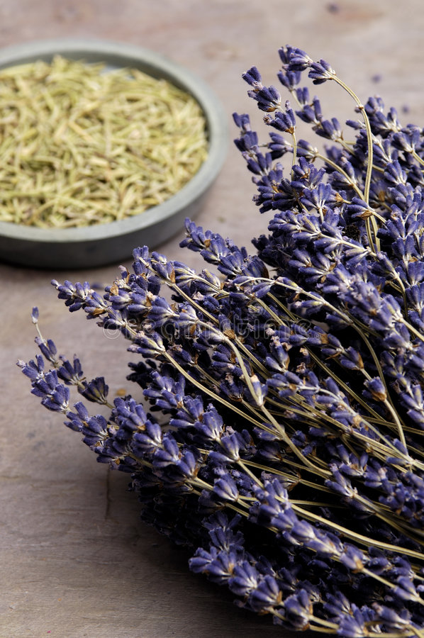 Lavendel en Rosemary stock afbeelding