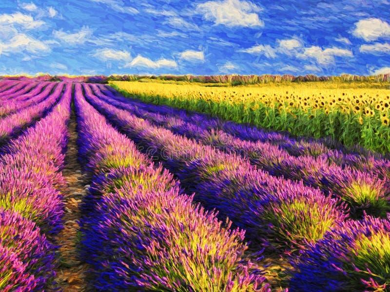 Lavendel en zonnebloemengebied stock foto's