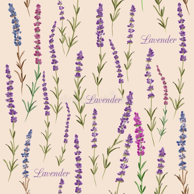 Lavendel förgrena sig den sömlösa modellen tappning för stil för illustrationlilja röd royaltyfri illustrationer