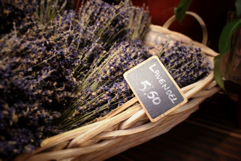 Lavendel stock photo