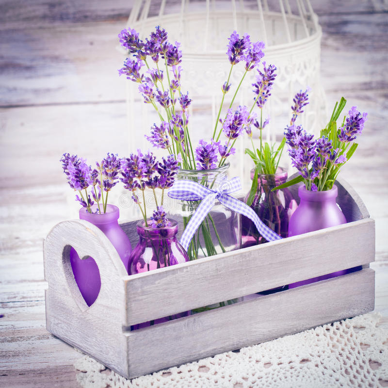 Lavendel i flaskdekor royaltyfri bild