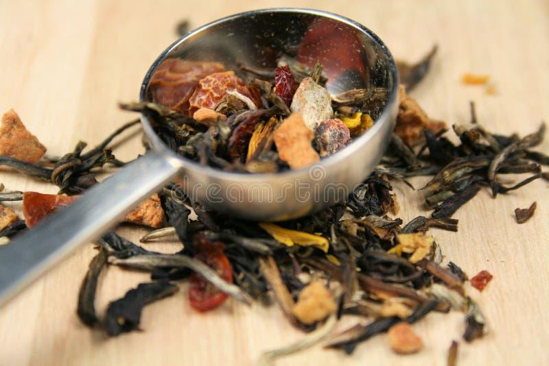 lavendel loose tea royaltyfri foto