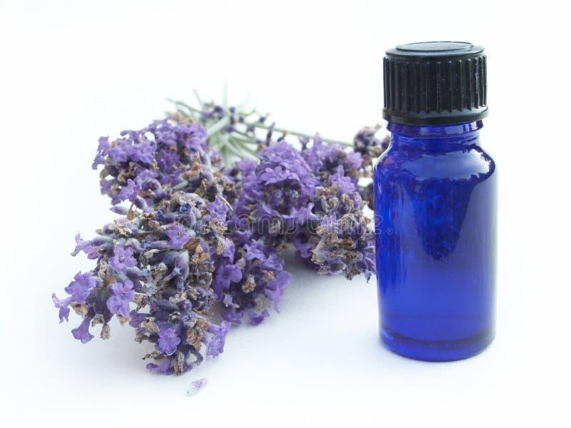 Lavendel met kruid royalty-vrije stock foto