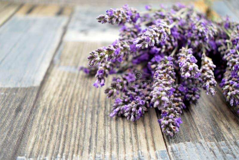 Lavendel på träbilder för ett bakgrundsmateriel fotografering för bildbyråer
