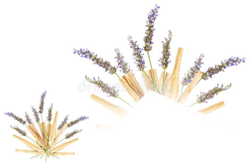 Lavendel Palo Santo Bouquet Isolated fotografering för bildbyråer