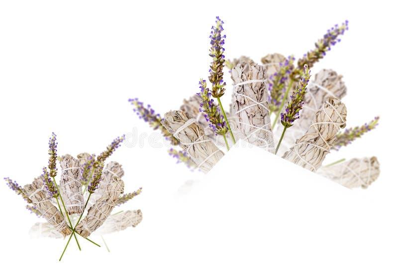 Lavendel Sage Bouquet Isolated royaltyfri foto