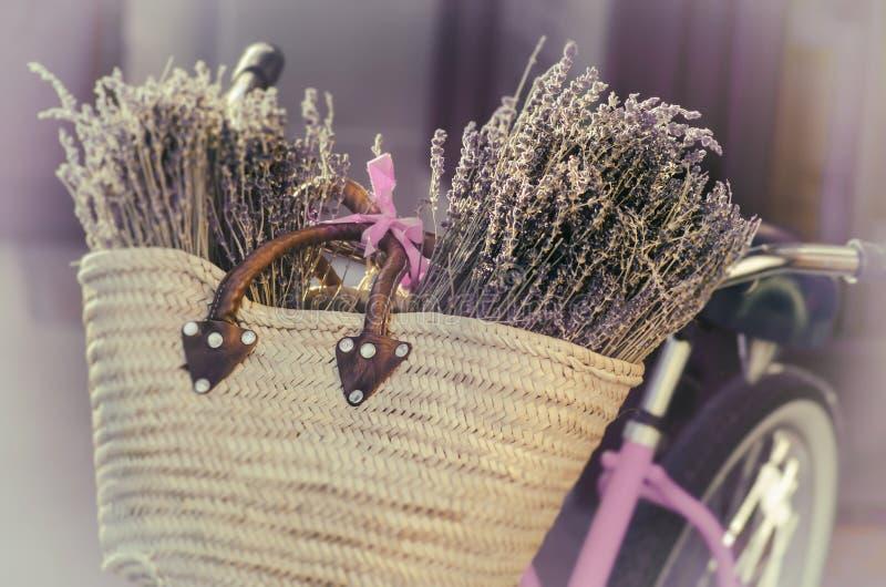 Lavendel, Toscanië, Frankrijk royalty-vrije stock foto's