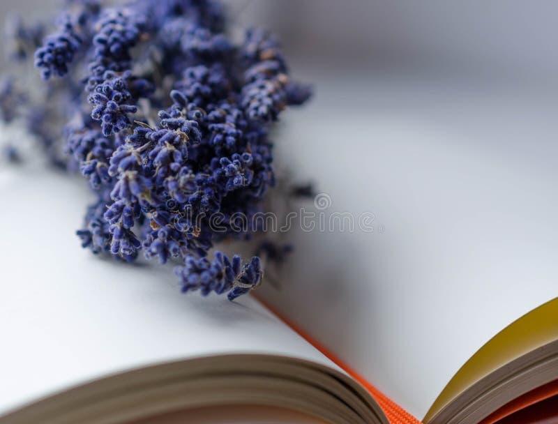 Lavendel und Buch stockbild