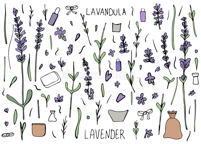 Lavendel vastgestelde samenstelling in krabbelstijl vector illustratie