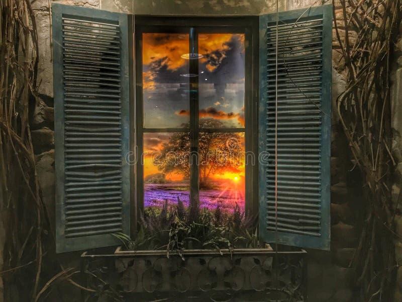 Lavendelansicht lizenzfreie stockbilder