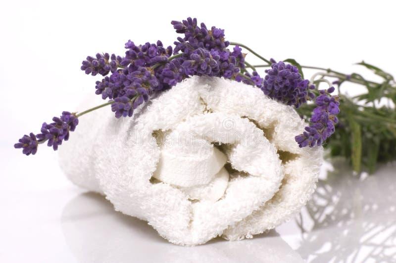 Lavendelbad lizenzfreie stockbilder