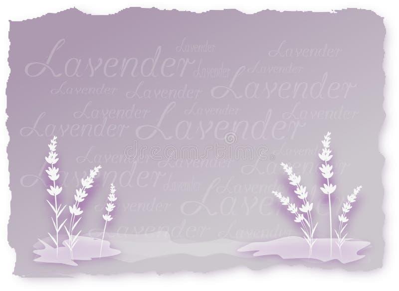 Lavendelbakgrund royaltyfri illustrationer