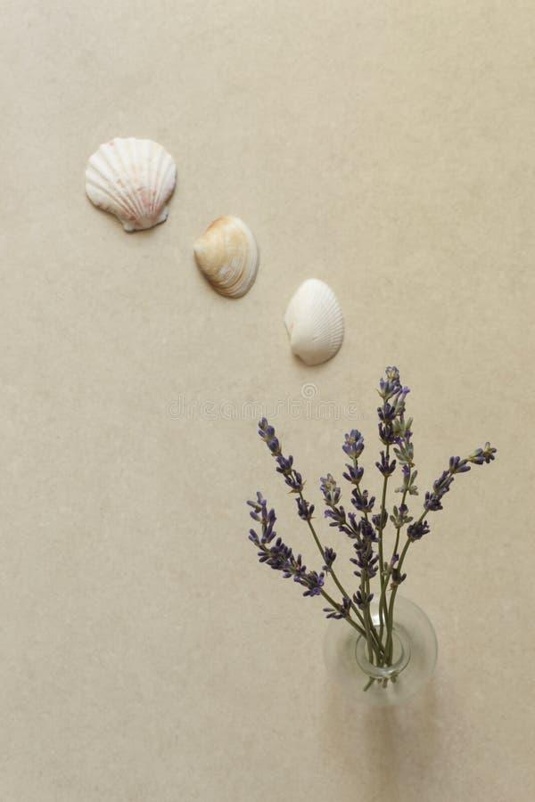 Lavendelbloem in vaas royalty-vrije stock afbeeldingen