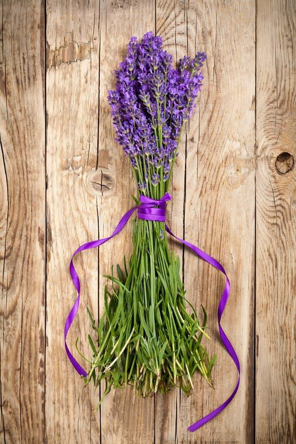 Lavendelbloemen royalty-vrije stock afbeeldingen