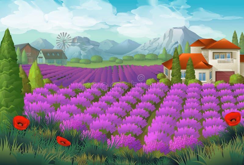 Lavendelblommafält vektor illustrationer