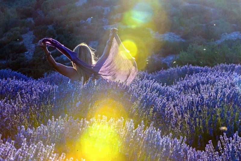 Lavendelblommor och dam i fält på solnedgången Ljus ove för soluppgång royaltyfria foton
