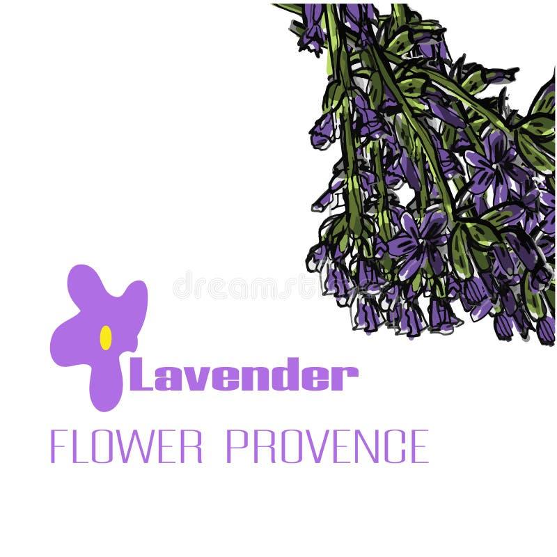 Lavendelblume Sonnenkollektor und Zeichen f?r alternative Energie Karte oder Fahne Vektorhand gezeichnet stock abbildung