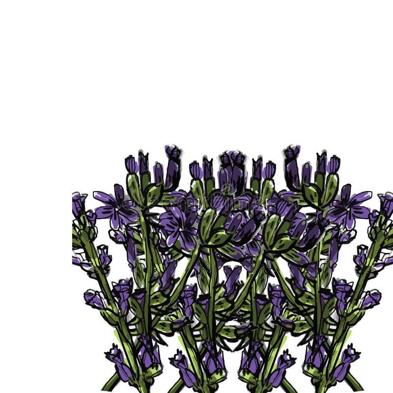 Lavendelblume Sonnenkollektor und Zeichen f?r alternative Energie Karte oder Fahne Vektorhand gezeichnet vektor abbildung
