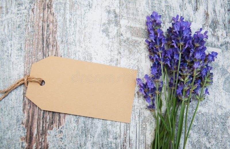 Lavendelblumen mit Tag lizenzfreie stockfotografie