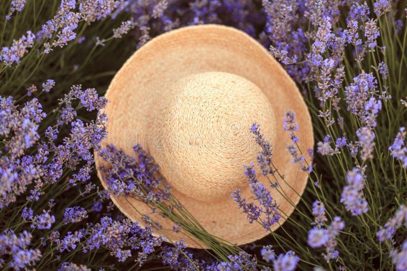 Lavendelboeket op een geweven hoedenfedora stock fotografie