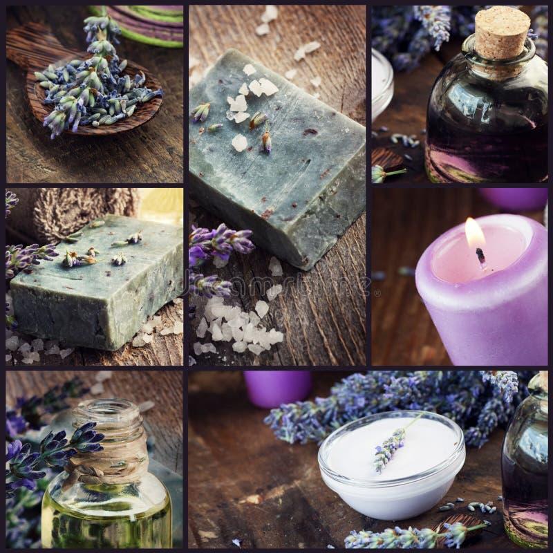 Lavendeldayspacollage arkivfoton