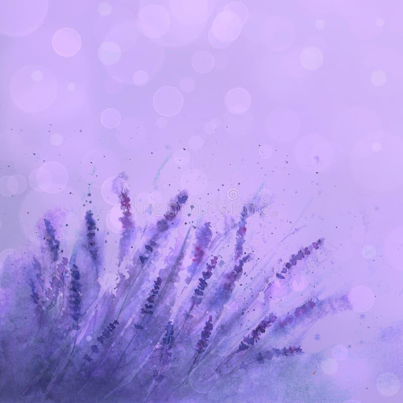 Lavendelf?ltbakgrund Utdragna blommor f?r akvarellhand, sidor, v?xter stock illustrationer