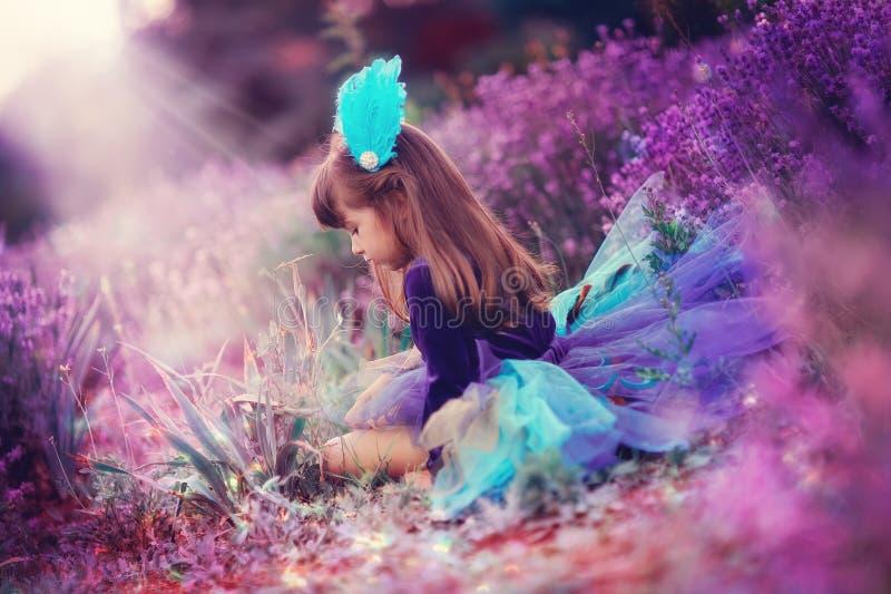 Lavendelfeld stockbild