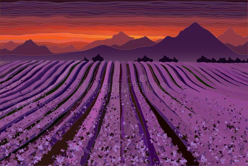 Lavendelgebied bij de schemer Lijnen van bloemstruiken stock illustratie
