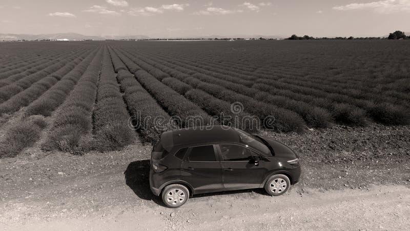 Lavendelgebied en auto op de landweg royalty-vrije stock foto's