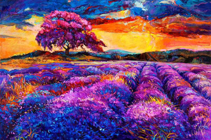 Lavendelgebieden stock illustratie